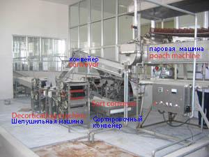 оборудование для обжарки арахиса в масле