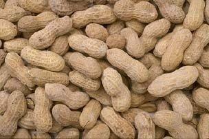Аргентинский арахис в скорлупе